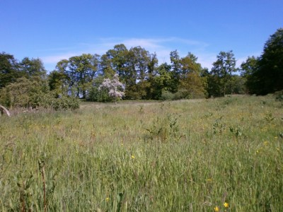 Vente d'une grange dans la campagne normande